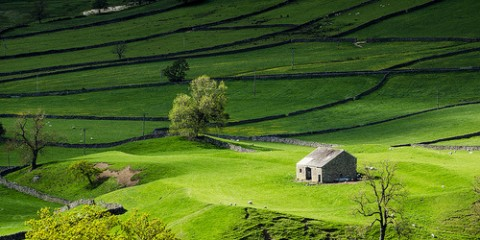 green-fields-yorkshire-dales-england