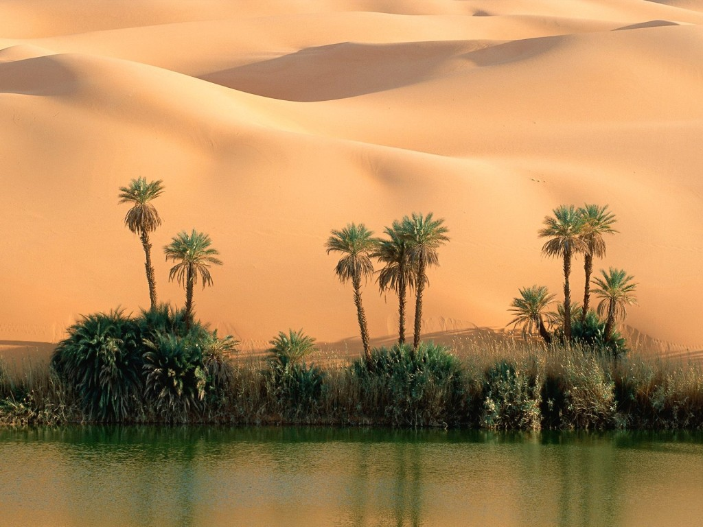nature_other_desert_oasis_wallpaper-normal