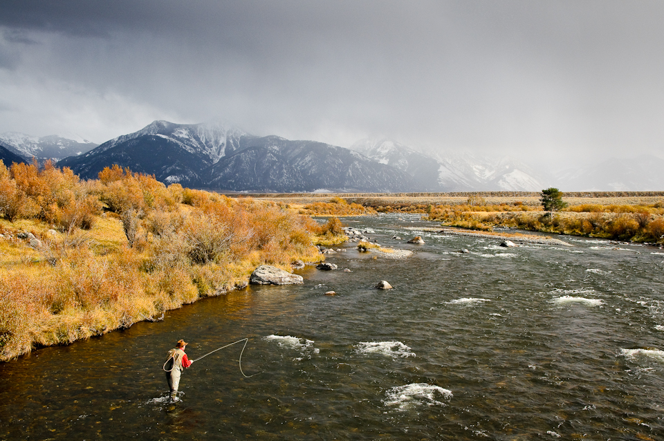 Madison River, MT, fall color-11